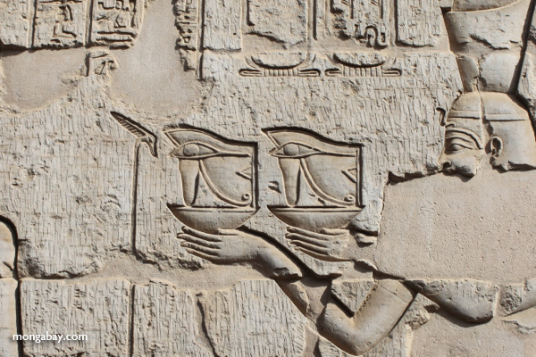 Wall reliefs at the Temple of Kom Ombo [egypt_1629]