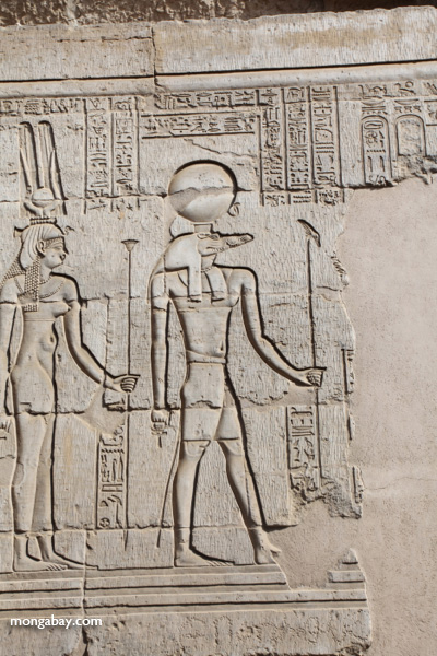 Wall reliefs at the Temple of Kom Ombo [egypt_1631]