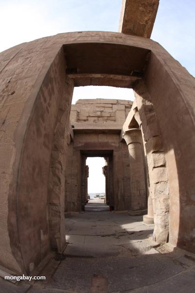 Temple of Kom Ombo [egypt_1643]