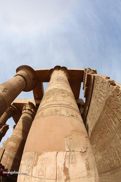 Temple of Kom Ombo [egypt_1652]