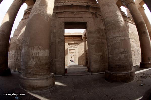 Temple of Kom Ombo [egypt_1654]