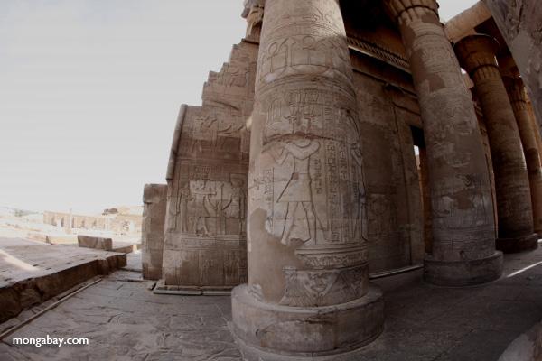 Temple of Kom Ombo [egypt_1658]