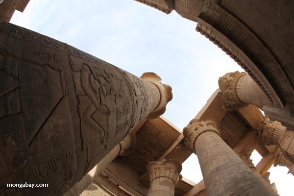 Temple of Kom Ombo [egypt_1662]