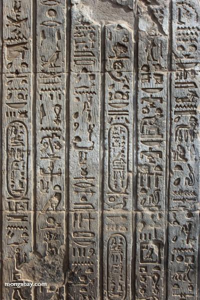 Temple of Kom Ombo [egypt_1684]