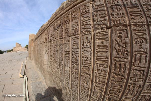 Hieroglphics on the Temple of Kom Ombo [egypt_1694]