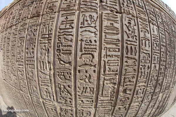 Hieroglphics on the Temple of Kom Ombo [egypt_1696]