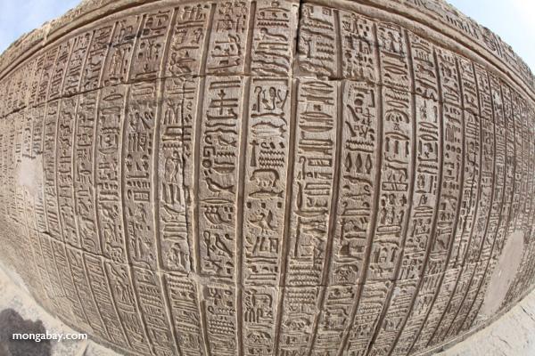 Hieroglphics on the Temple of Kom Ombo [egypt_1697]