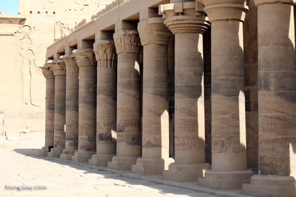 Columns at Philae Temple