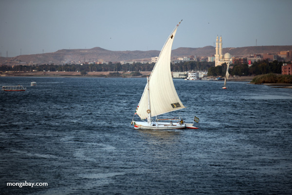Felucca on the Nile [egypt_1775]