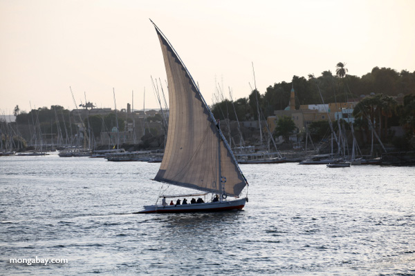 Felucca on the Nile [egypt_1778]