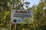 Di Kawasan Perlindungan Sumber Air Krueng Kaloek (KaPeSAK)