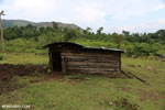 Hut for livestock