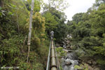 Pipeline trail [aceh_0580]