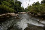 River near Jantho