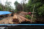 Illegal sawmill in Borneo [kalteng_0202]