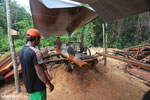 Workers at an illegal sawmill in Borneo [kalteng_0210]