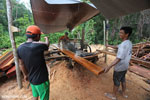 Workers at an illegal sawmill in Borneo [kalteng_0211]