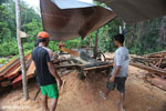 Workers at an illegal sawmill in Borneo [kalteng_0214]