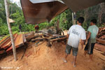 Illegal logging operation in Borneo [kalteng_0241]