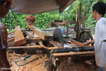 Illegal logging operation in Borneo [kalteng_0249]