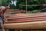 Stacks of illegally logged timber in Borneo [kalteng_0265]