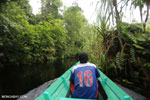 Navigating Borneo's peat forest [kalteng_0510]