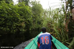 Navigating Borneo's peat forest [kalteng_0511]