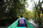 Navigating Borneo's peat forest [kalteng_0512]