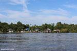 Sei Gohong on the Rungan River [kalteng_0705]