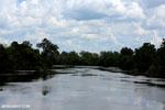 Rungan River [kalteng_0761]