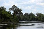 Rungan River [kalteng_0763]