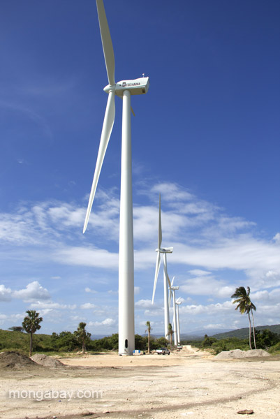 Wind farm in the Dominican Republic. Photo by: Tiffany Roufs.