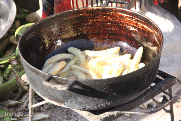 Fried plantains at the bi-weekly Haitian market in Pedernales, Dominican Republic.
