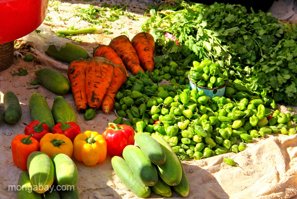 Vegetables for sale at the bi-weekly Haitian market in Pedernales, Dominican Republic.