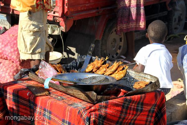 Fried fish at the bi-weekly Haitian market in Pedernales, Dominican Republic.