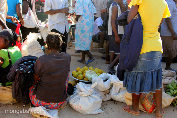 The bi-weekly Haitian market in Pedernales, Dominican Republic.