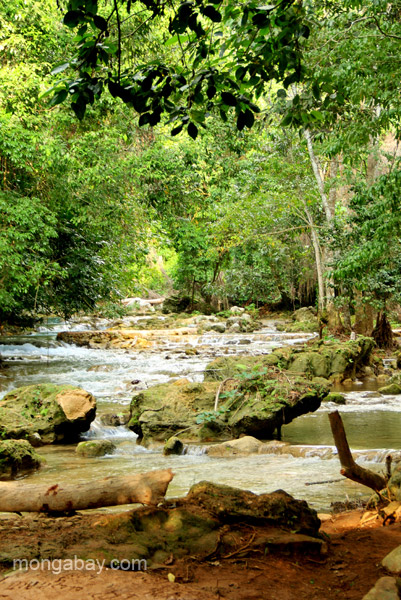 A view of the river, a community gathering spot, near Mencia in the Pedernales Province of the Dominican Republic.