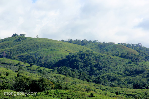Views of the mountains near the village of Mencia, Dominican Republic.