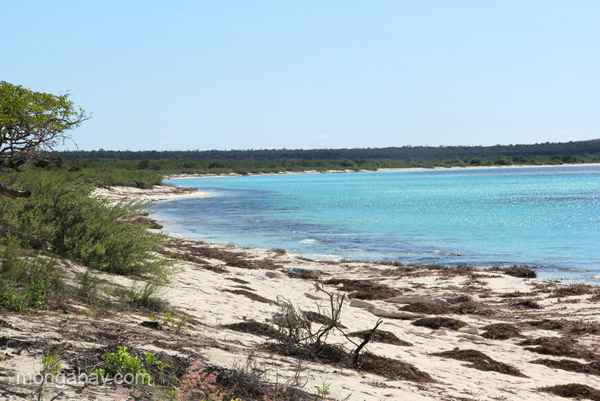 Bahia de las Aguilas - 8 km of undeveloped beach in Jaragua National Park in the Dominican Republic.