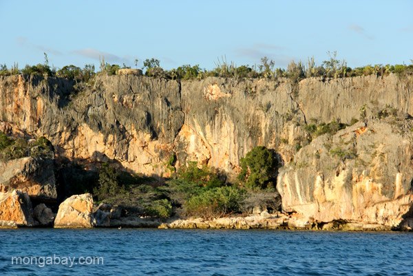 A view of the unique spiny forest that borders the beach of Bahia de las Aguilas at Jaragua National Park in the Dominican Republic.