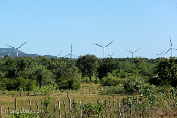 Windfarm in the Pedernales Peninsula, Dominican Republic.