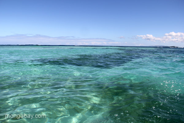 The crystal-clear waters of Cayo Arena in the Dominican Republic.