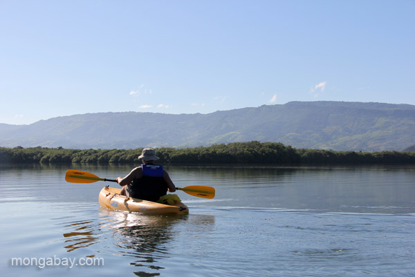 Kayaking is a eco-friendly way to visit the wildlife (including manatees) in Estero Hondo Marine Sanctuary in the Dominican Republic.