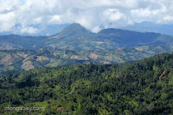 Mountain views from the Ebano Verde Scientific Reserve in the Dominican Republic.