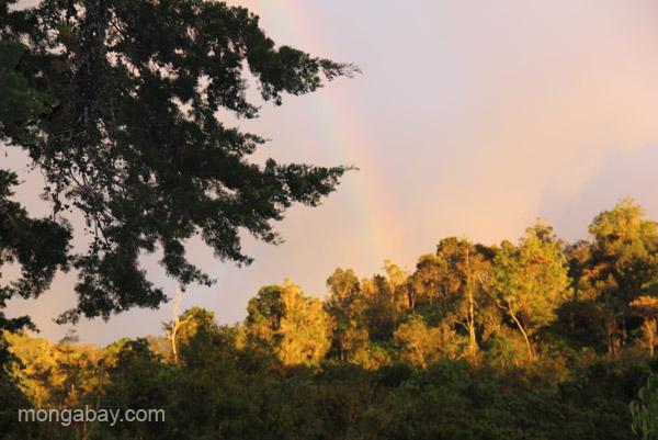 A rainbow over the Ebano Verde Scientific Reserve in the Dominican Republic.