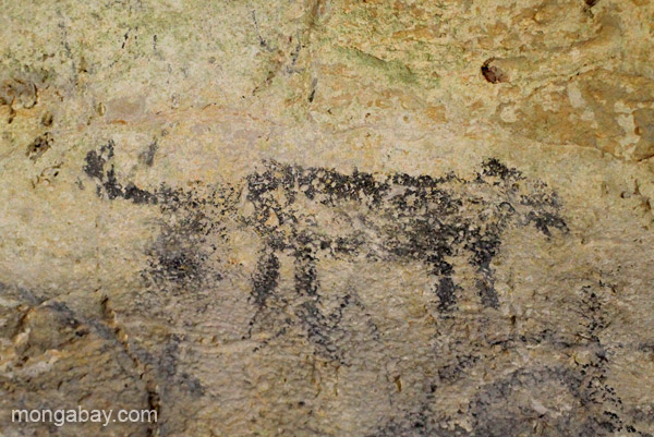 Taino cave painting in Los Haitises National Park in the Dominican Republic.