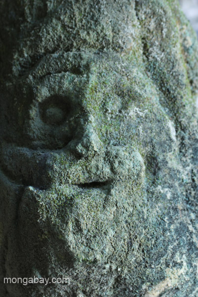 Taino cave carving of a face in Los Haitises National Park in the Dominican Republic.