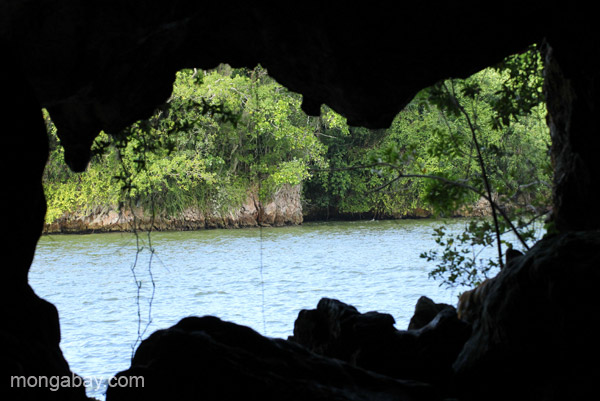 A view from inside the sacred Taino caves in Los Haitises National Park in the Dominican Republic. Photo by: Tiffany Roufs.