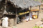 Mangos for sale along a road in Madagascar [madagascar_ankarafantsika_0387]
