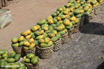 Mangos for sale along a road in Madagascar [madagascar_ankarafantsika_0388]